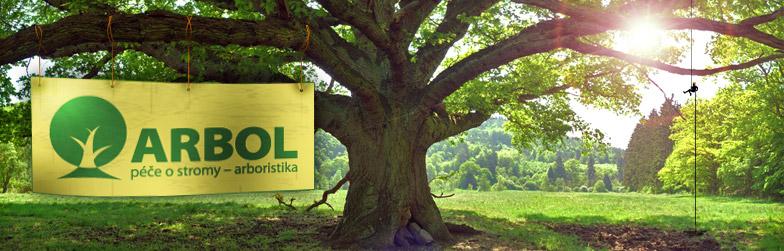 Arbol - péče o stromy